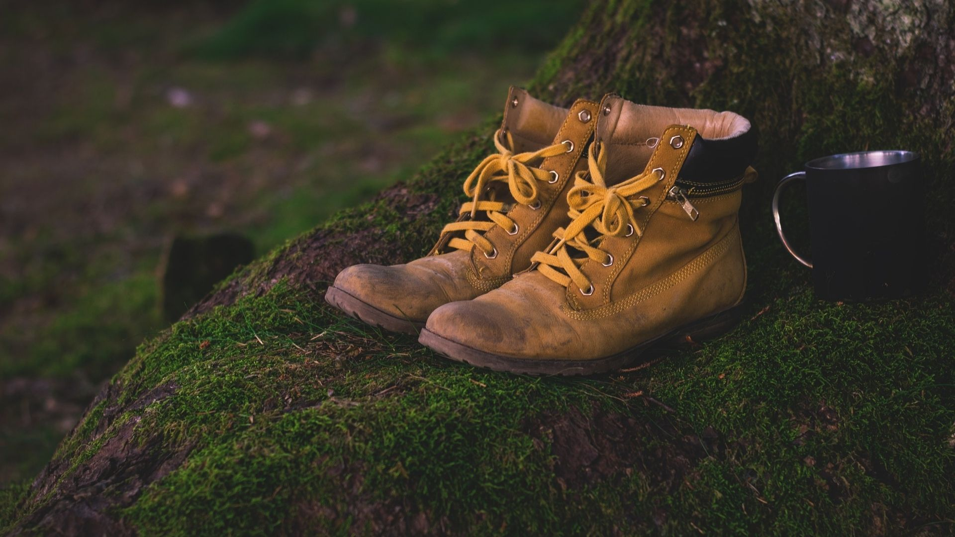 Gospel shoes resized